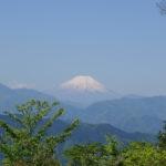 登って下りて3時間。高尾山で気軽にリフレッシュしよう